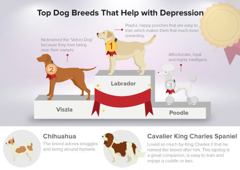 dogs that aid depression