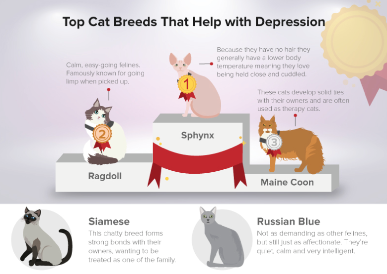 cats that aid depression