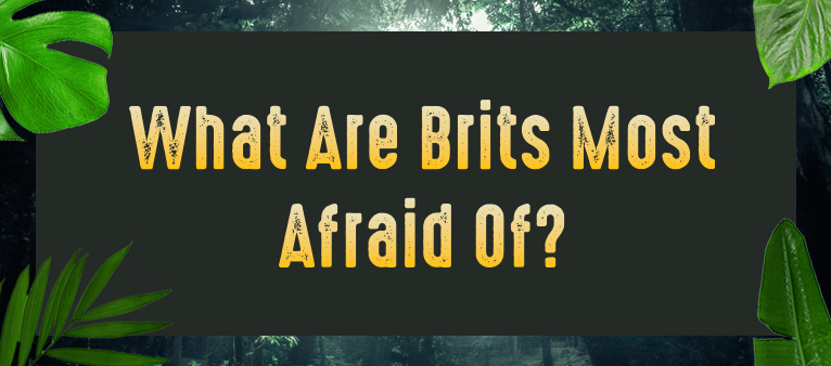 brits afraid of