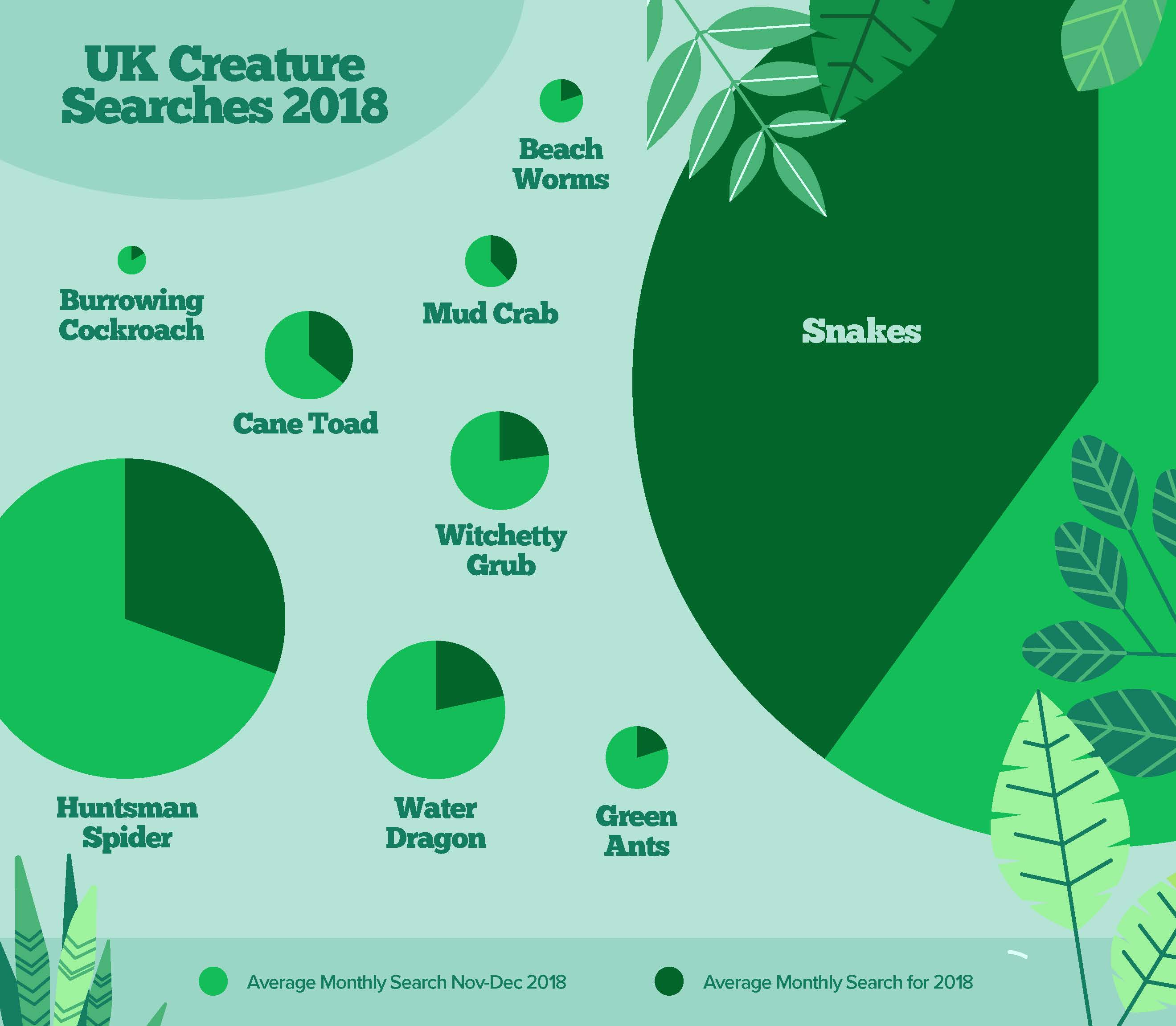 uk creature searches 2018 - bugs in the home