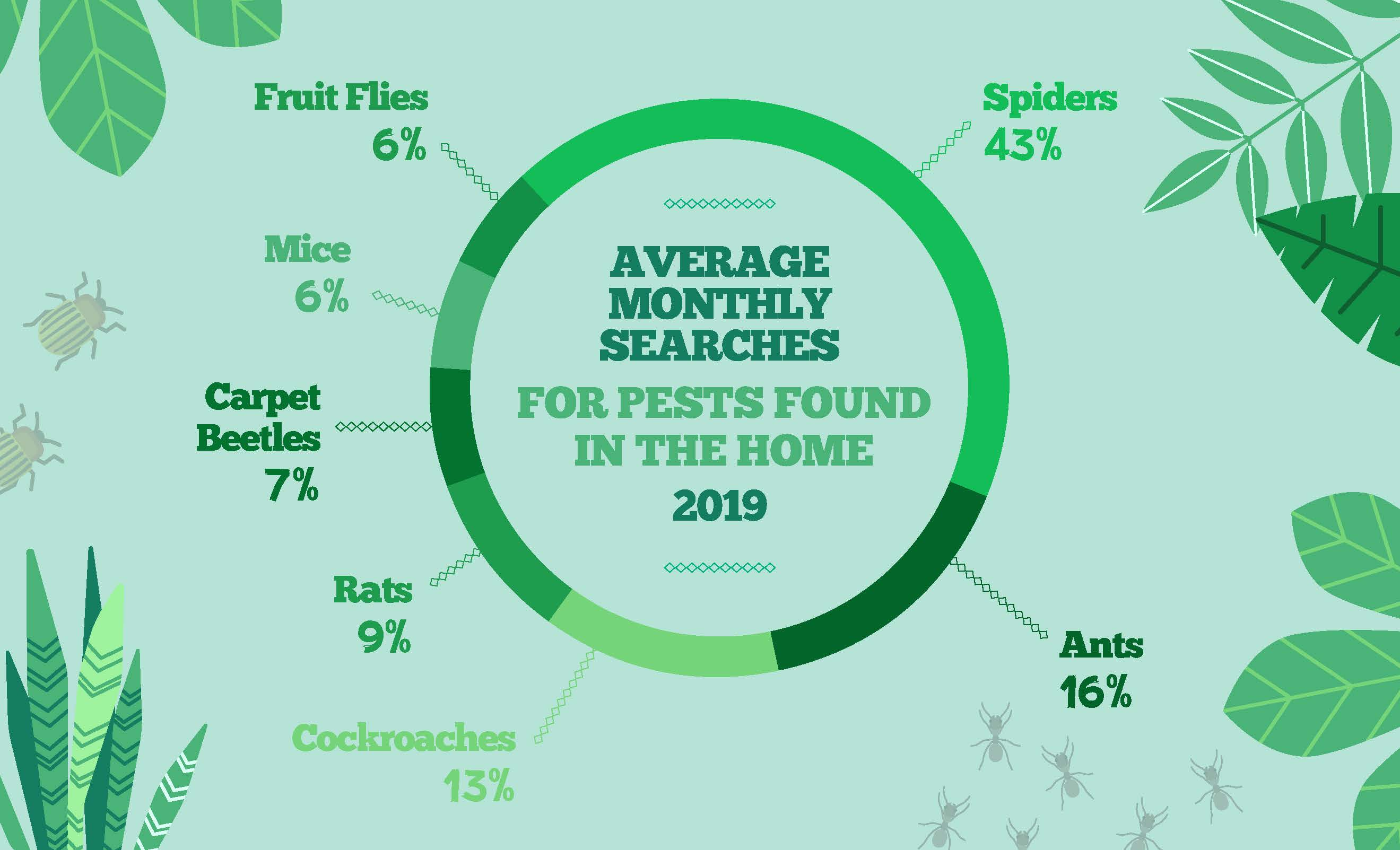 average monthly searches for pests found in the home 2019 - bugs in the home