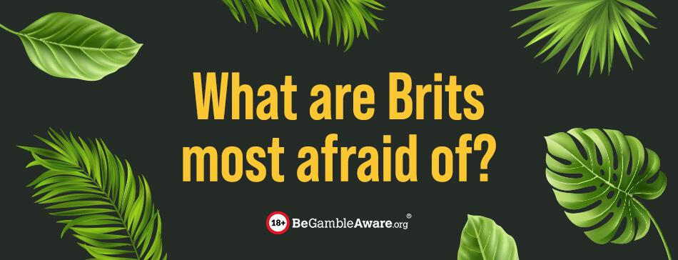 brits afraid of