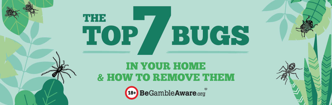 top 7 bugs in your home header